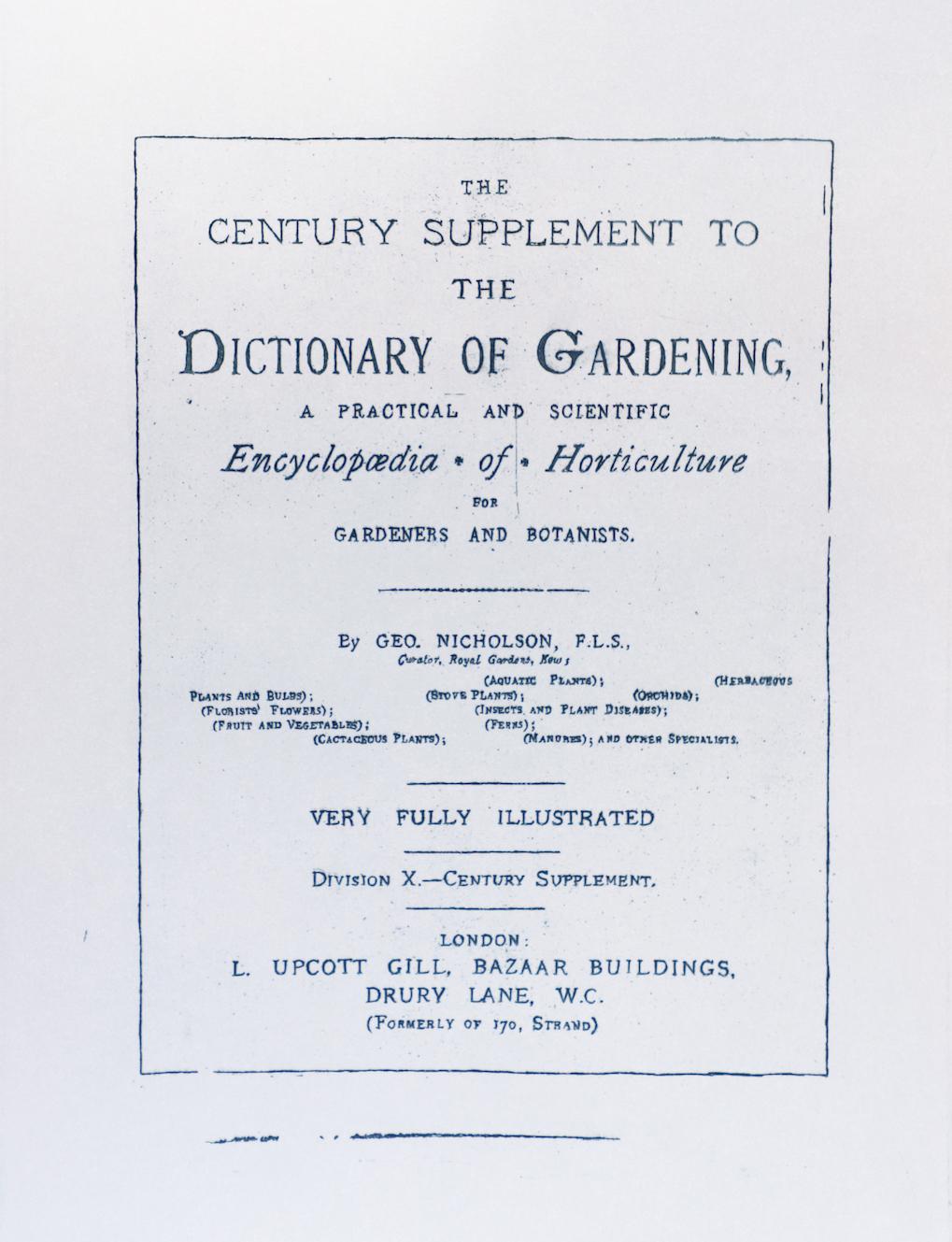 Sarasija Subramanian, etching on zinc plate, gardening serie