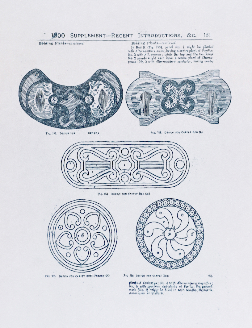 Sarasija Subramanian, etching on tracing paper
