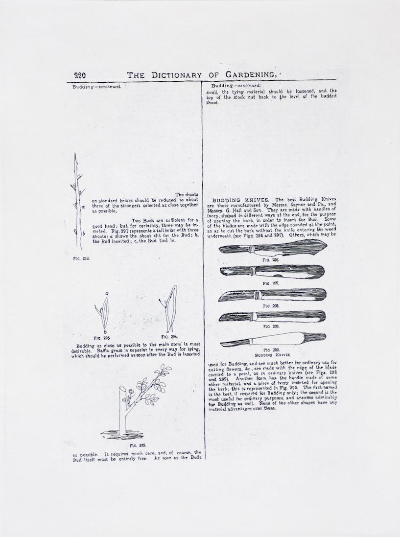 Sarasija Subramanian, etching on Canson Montval